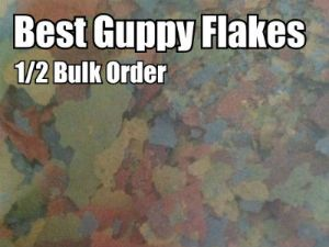 Best Guppy Flakes with FREE SHIPPING